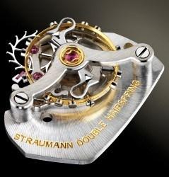 straumann-double-hairspring_web