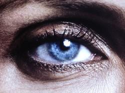 Auge low-res