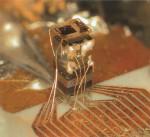 """Nur 4,2 mm hoch: Das """"Türmchen"""" der Computerchip-Atomuhr mit Laserlichtquelle, Optik, Zelle und Fotodetektor"""