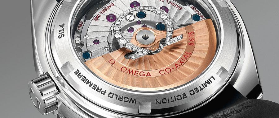 Omega: Seamaster Planet Ocean Platinum, Rückseite