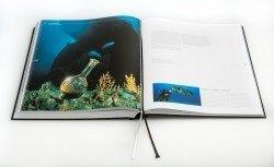 Das Buch zur Uhr versammelt spektakuläre Unterwasseraufnahmen und gehört zum Lieferumfang.