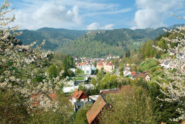 Der Sitz der Uhrenmarke Junghans befindet sich mitten im Schwarzwald, in dem malerischen Ort Schramberg.