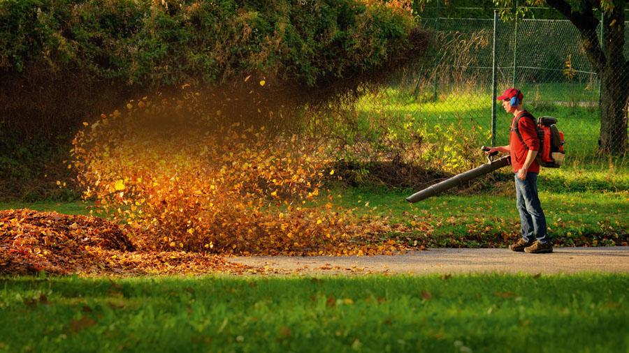 Der Herbst ist da! Foto: Fotolia.com/Smileus