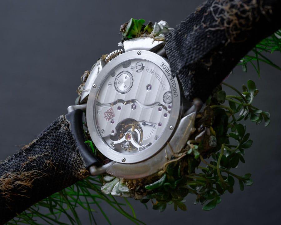 Rückseite der H. Moser & Cie: Moser Nature Watch