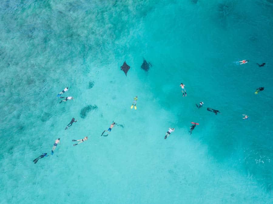 Carl F. Bucherer: Manta Trust Experience 2017 auf den Malediven Taucheruhren Special 2019