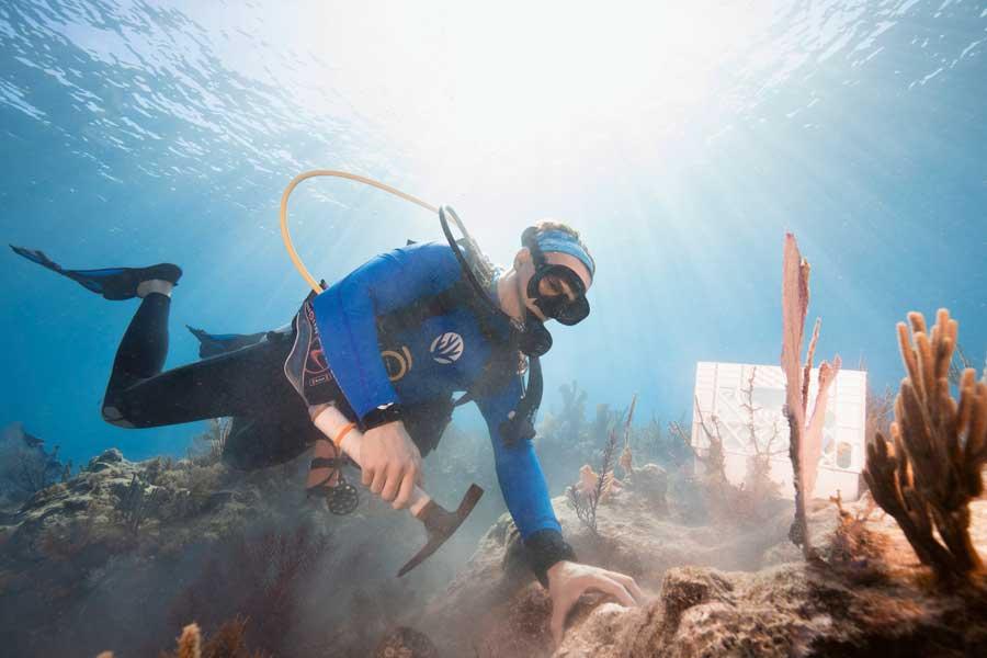 Oris Carysfort Reef Limited Edition HighRes Taucheruhrenspecial 2020