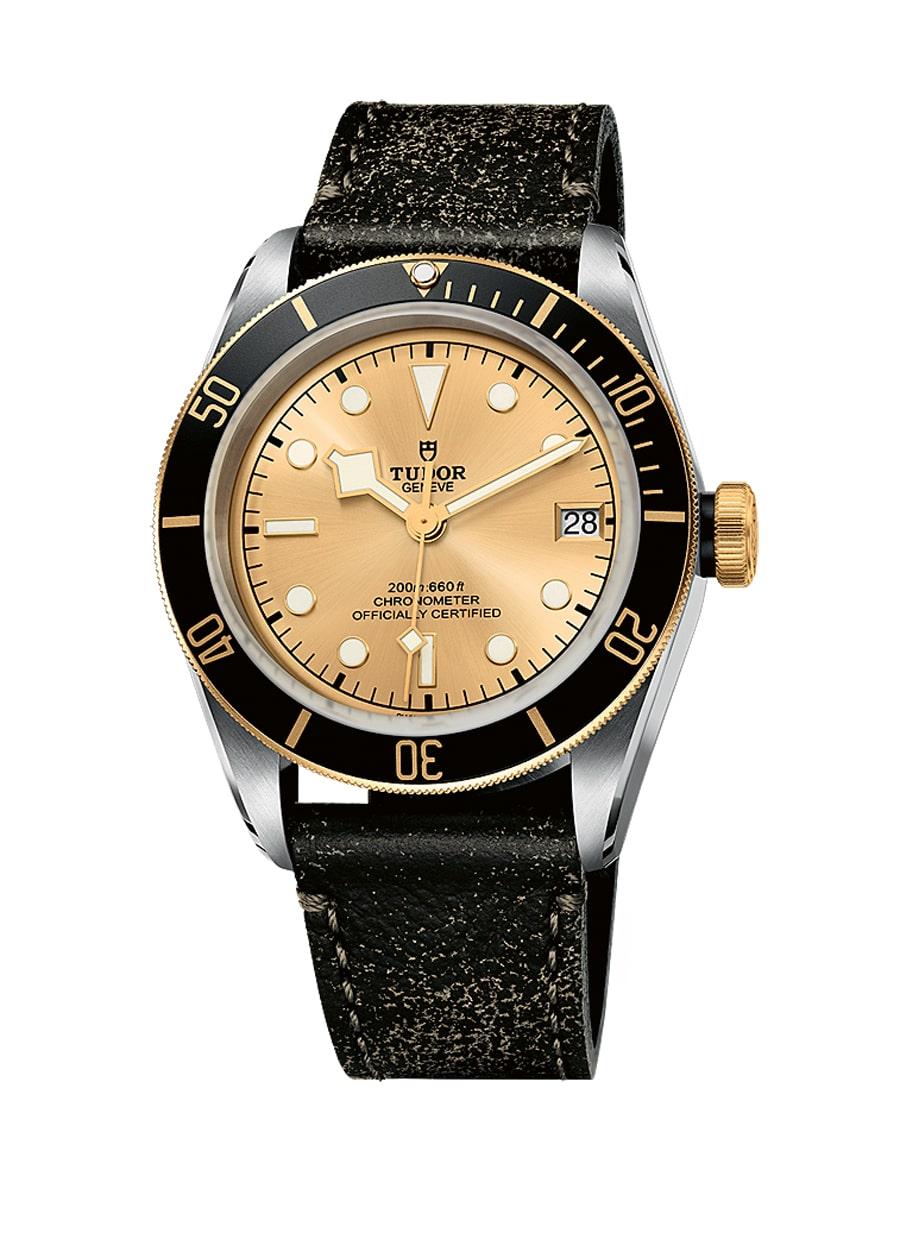Tudor Black Bay S & G